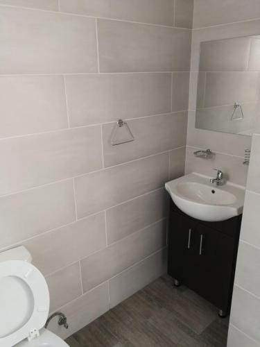 new sink and bathroom tiling